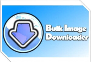 Bulk Image Downloader 5.85.0 Crack With Keygen 2021 + Full Torrent